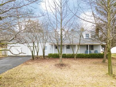 Grove City Single Family Home For Sale: 4272 Hoover Road