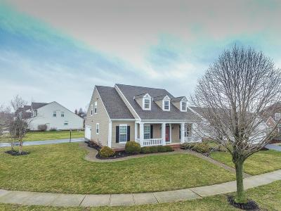 Dublin Single Family Home For Sale: 5542 Kinvarra Lane