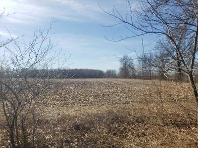 Johnstown Residential Lots & Land For Sale: Woodhaven Road
