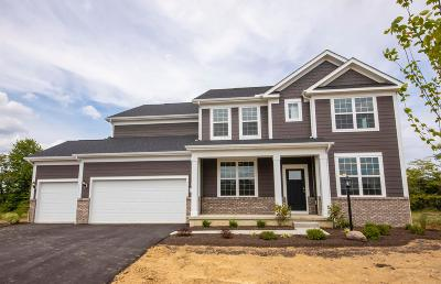 Galena Single Family Home For Sale: 6409 Brookview Manor Drive