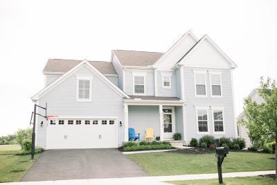 Plain City Single Family Home For Sale: 10388 Hazelnut Drive