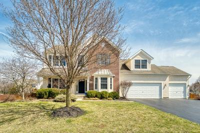 Hilliard Single Family Home For Sale: 3224 Benbrook Pond Drive