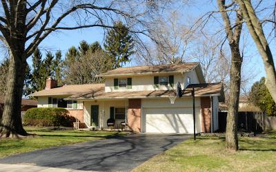 Upper Arlington Single Family Home For Sale: 2212 Buckley Road
