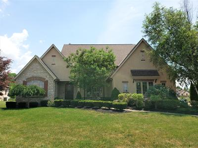 Pickerington Single Family Home For Sale: 13864 Leone Court