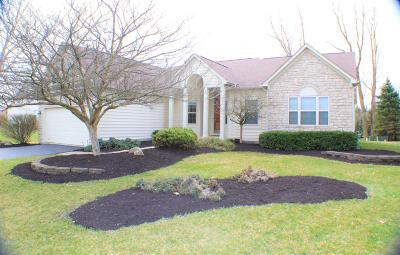 Lewis Center Single Family Home Sold: 2172 Abbey Knoll Drive