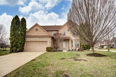 Dublin Single Family Home For Sale: 8017 Townsend Road