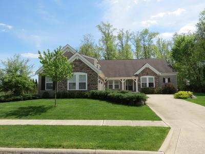 Dublin Single Family Home For Sale: 5908 Dunheath Loop
