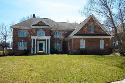 Dublin  Single Family Home For Sale: 7905 Tartan Fields Drive