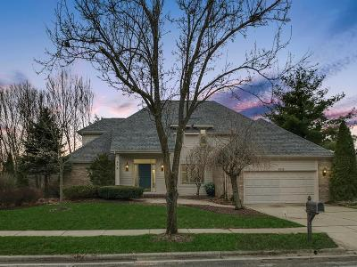 Columbus Single Family Home For Sale: 5615 Lynx Drive