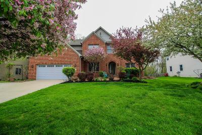 Westerville Single Family Home For Sale: 682 Bay Drive