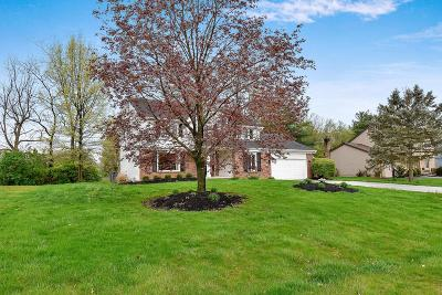 Pickerington Single Family Home For Sale: 9835 Hounsdale Drive