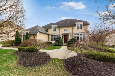 Dublin Single Family Home For Sale: 4329 Wyandotte Woods Boulevard