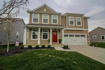 Obetz Single Family Home For Sale: 4456 Butler Farms Drive