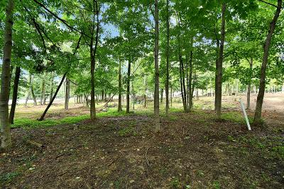 Canal Winchester Residential Lots & Land For Sale: 1384 Bluebird Lane #Lot 9