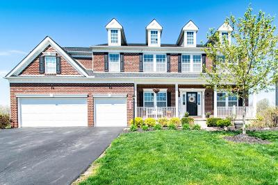 Delaware County, Franklin County, Union County Single Family Home For Sale: 449 Melimare Drive