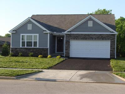 Circleville Single Family Home For Sale: 328 Victor Drive