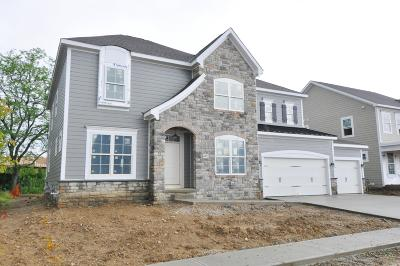 Dublin Single Family Home For Sale: 6472 Dicesare Loop #Lot 57