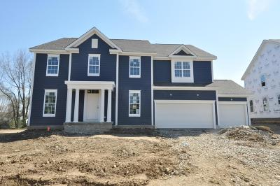 Blacklick Single Family Home For Sale: 7525 Wolli Creek Drive #Lot 4
