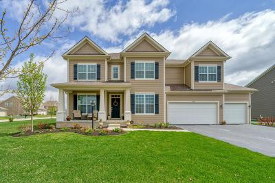 Single Family Home For Sale: 4859 Braiden Drive