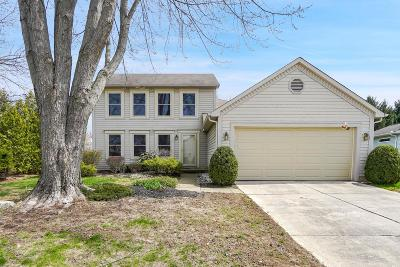 Hilliard Single Family Home For Sale: 5665 Converse Court