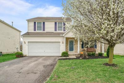 Westerville Single Family Home For Sale: 5622 Genoa Farms Boulevard