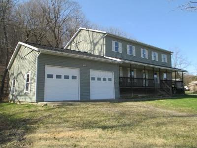 Nashport Single Family Home For Sale: 4595 Licking Valley Road SE