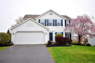 Westerville Single Family Home For Sale: 352 Abbotsbury Drive