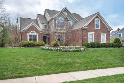 Single Family Home For Sale: 8691 Swisher Creek Crossing