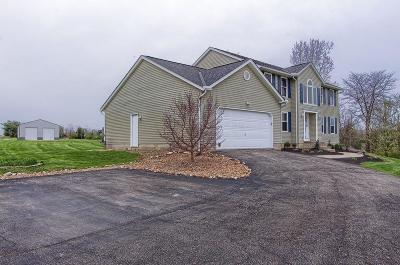 Delaware County, Franklin County, Union County Single Family Home For Sale: 5720 Olentangy River Road