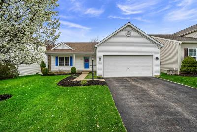 Single Family Home For Sale: 7936 Blacklick View Drive