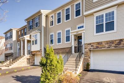 Columbus Single Family Home For Sale: 6293 Chetti Drive