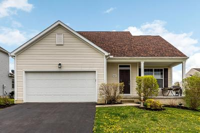 Lancaster Single Family Home For Sale: 2442 Running Brook Avenue