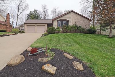 Gahanna Single Family Home For Sale: 508 Howland Drive