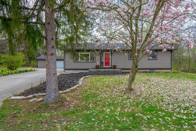 Delaware Single Family Home For Sale: 6250 Home Road