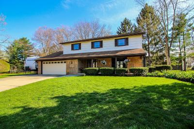 Westerville Single Family Home For Sale: 39 Lynette Place N