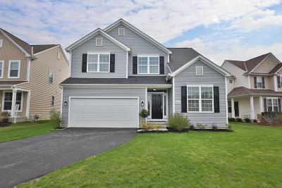 Blacklick Single Family Home For Sale: 8591 Crooked Maple Drive