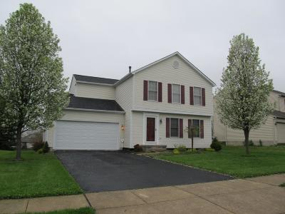 Lancaster Single Family Home For Sale: 1763 Tecumseh Drive