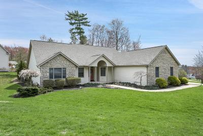 Licking County Single Family Home For Sale: 641 Alpine Circle