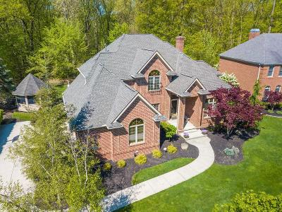 Dublin  Single Family Home For Sale: 8387 Tartan Fields Drive