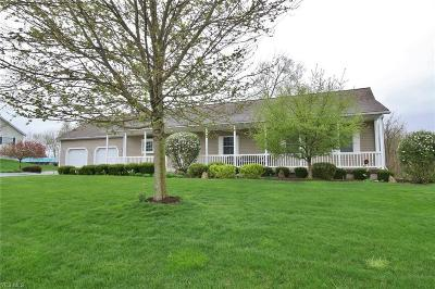 Nashport Single Family Home For Sale: 7177 Eaglepoint Drive
