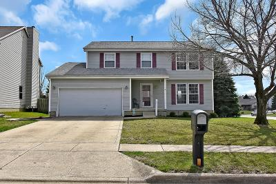 Reynoldsburg Single Family Home For Sale: 8317 Bedlington Drive