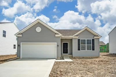 Franklin County, Delaware County, Fairfield County, Hocking County, Licking County, Madison County, Morrow County, Perry County, Pickaway County, Union County Single Family Home For Sale: 185 Chestnut Commons Drive