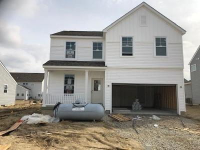 Franklin County, Delaware County, Fairfield County, Hocking County, Licking County, Madison County, Morrow County, Perry County, Pickaway County, Union County Single Family Home For Sale: 187 Chestnut Commons Drive