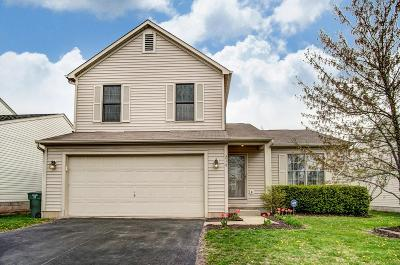 Franklin County, Delaware County, Fairfield County, Hocking County, Licking County, Madison County, Morrow County, Perry County, Pickaway County, Union County Single Family Home For Sale: 216 Galloway Ridge Drive