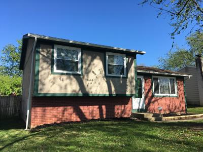 Franklin County, Delaware County, Fairfield County, Hocking County, Licking County, Madison County, Morrow County, Perry County, Pickaway County, Union County Single Family Home For Sale: 1684 Rivermont Road