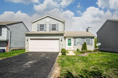 Franklin County, Delaware County, Fairfield County, Hocking County, Licking County, Madison County, Morrow County, Perry County, Pickaway County, Union County Single Family Home For Sale: 3206 Andy Terrace