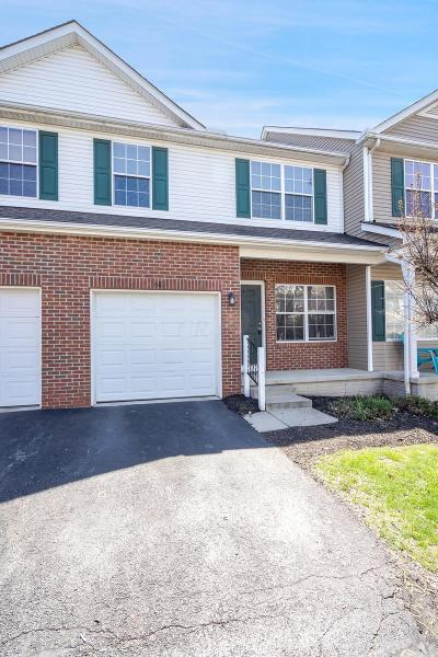 Franklin County, Delaware County, Fairfield County, Hocking County, Licking County, Madison County, Morrow County, Perry County, Pickaway County, Union County Single Family Home For Sale: 685 Wilke Place