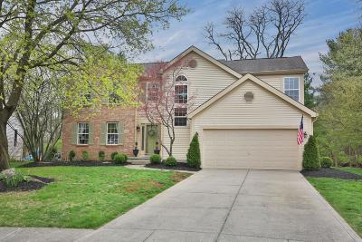Franklin County, Delaware County, Fairfield County, Hocking County, Licking County, Madison County, Morrow County, Perry County, Pickaway County, Union County Single Family Home For Sale: 3682 Stunsail Lane