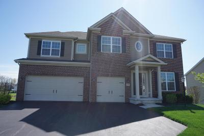 Franklin County, Delaware County, Fairfield County, Hocking County, Licking County, Madison County, Morrow County, Perry County, Pickaway County, Union County Single Family Home For Sale: 200 Balsam Drive