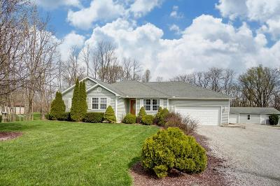 Franklin County, Delaware County, Fairfield County, Hocking County, Licking County, Madison County, Morrow County, Perry County, Pickaway County, Union County Single Family Home For Sale: 5225 County Rd 15